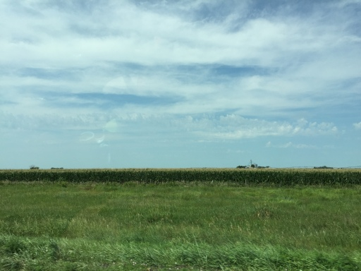 In the middle of Nebraska there is much corn